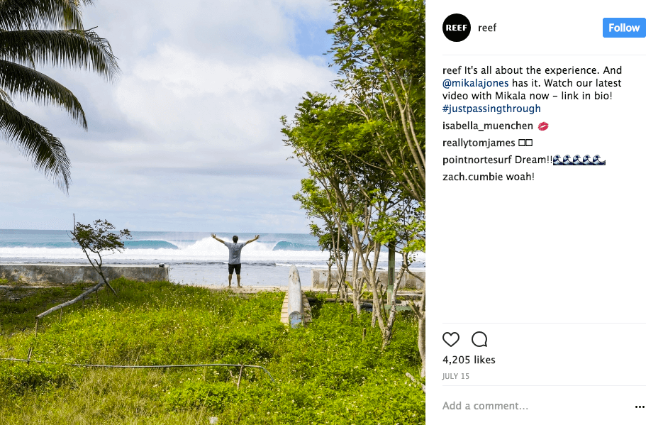 7 of the Best, San Diego-Based Instagram Accounts