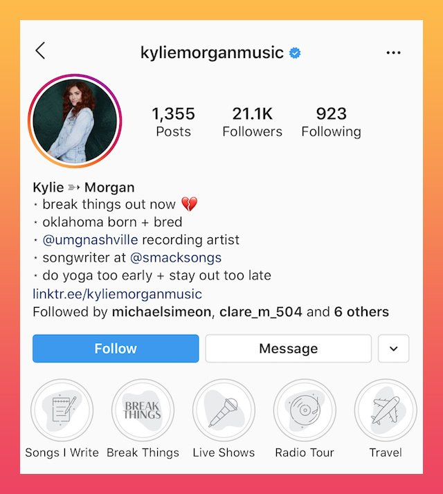 good Instagram bios media and music example