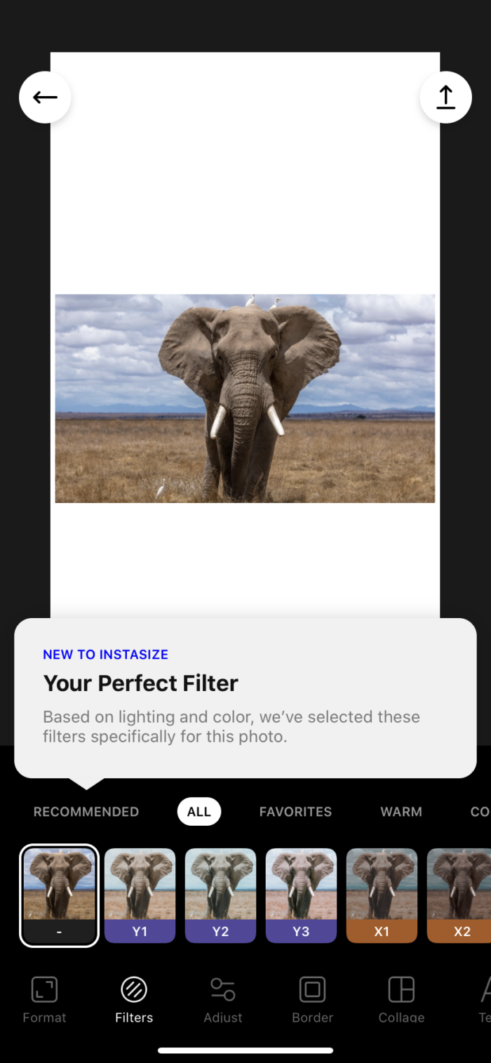 Instasize filters