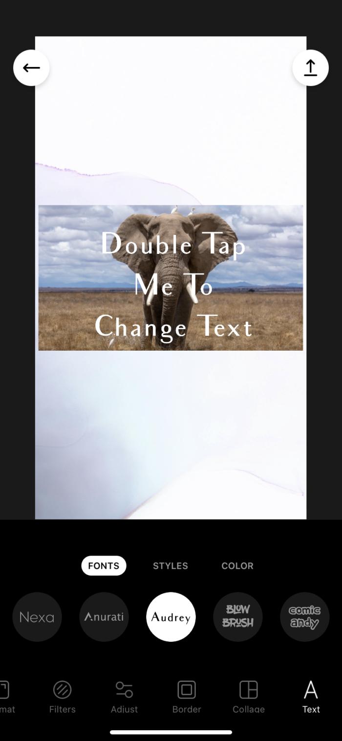 Instasize text options