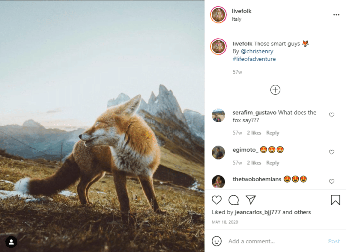 How To Repost on Instagram discover earth