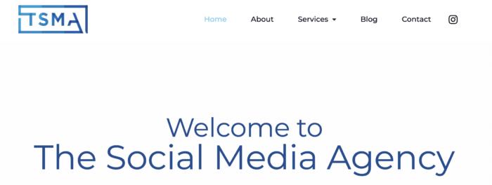 TSMA homepage